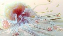 Engulfing pathogens