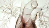 Fluoroscopy heart